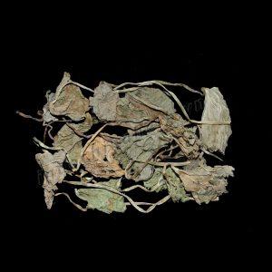 Herba Centellae asiaticae - Rau ma, Tich tuyet thao - 积雪草 Ji Xue Cao